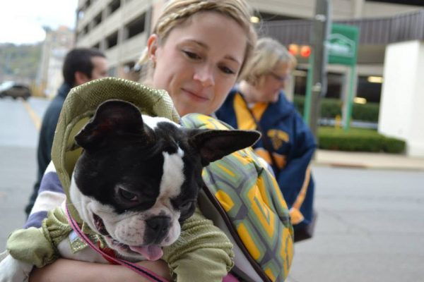 Dog Park - Costume