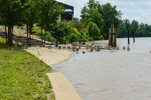 Portions of Heritage Port remained submerged this week.