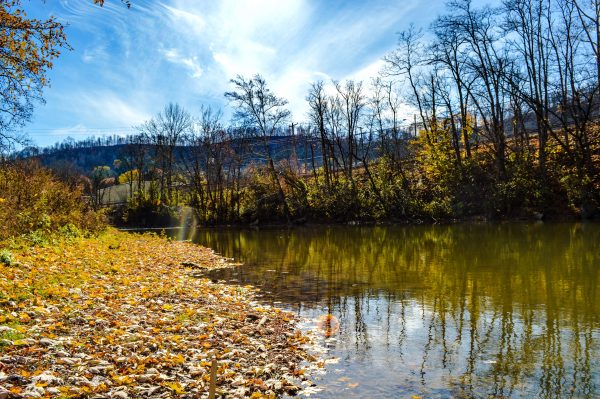 Elm Grove residents have the chance to enjoy Big Wheeling Creek near the Patterson recreational complex.