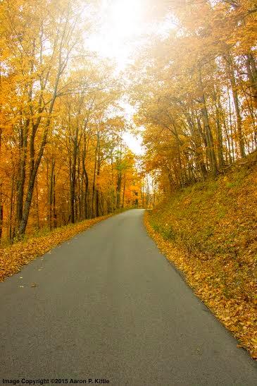 aaron-autumn