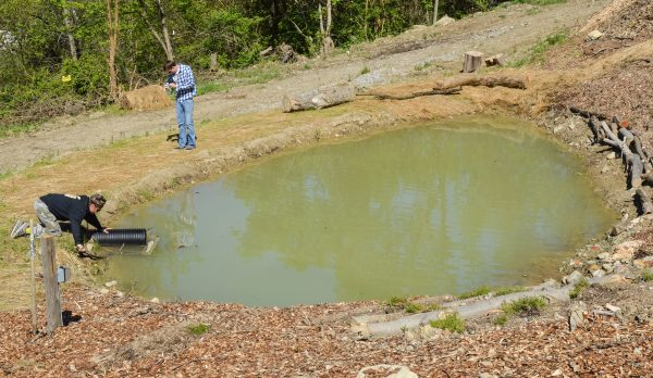 As a part of the project, Grow Ohio Valley wishes to capture water run-off in order to use during the growing process.