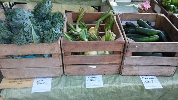 Grow Ohio Valley now has more than 20 different vegetables for sale each week.