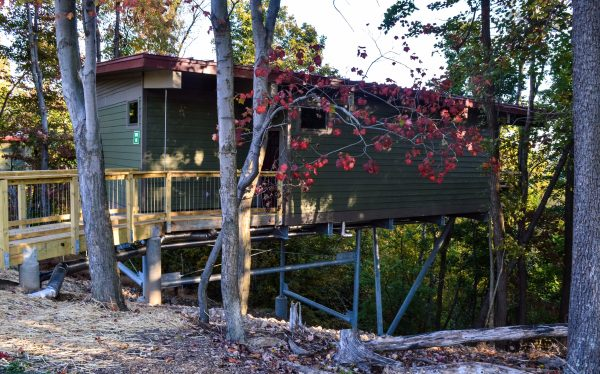 The treehouse cabins are stilted in an area of the park never utilized before.