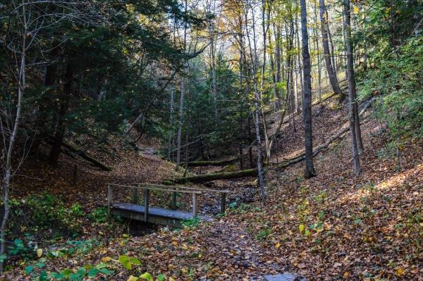 Tourism - Oglebay Woods