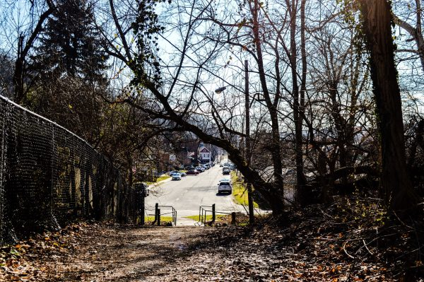"""The Path,"" commonly referred to these days as the, ""Pig Path,"" links Heiskel Avenue with Elm Street. A street car used to travel along the trail, and it is still used today by children and adults alike."