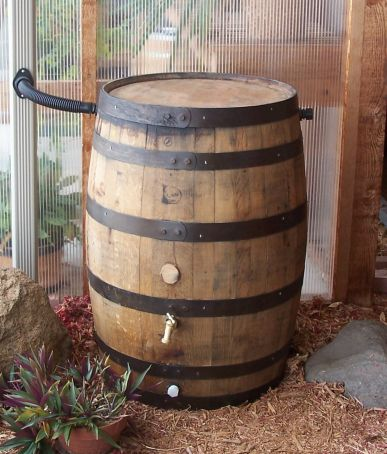 2012 white oak rain barrel