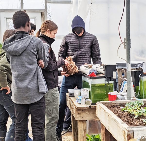 Students at work in the school greenhouse.