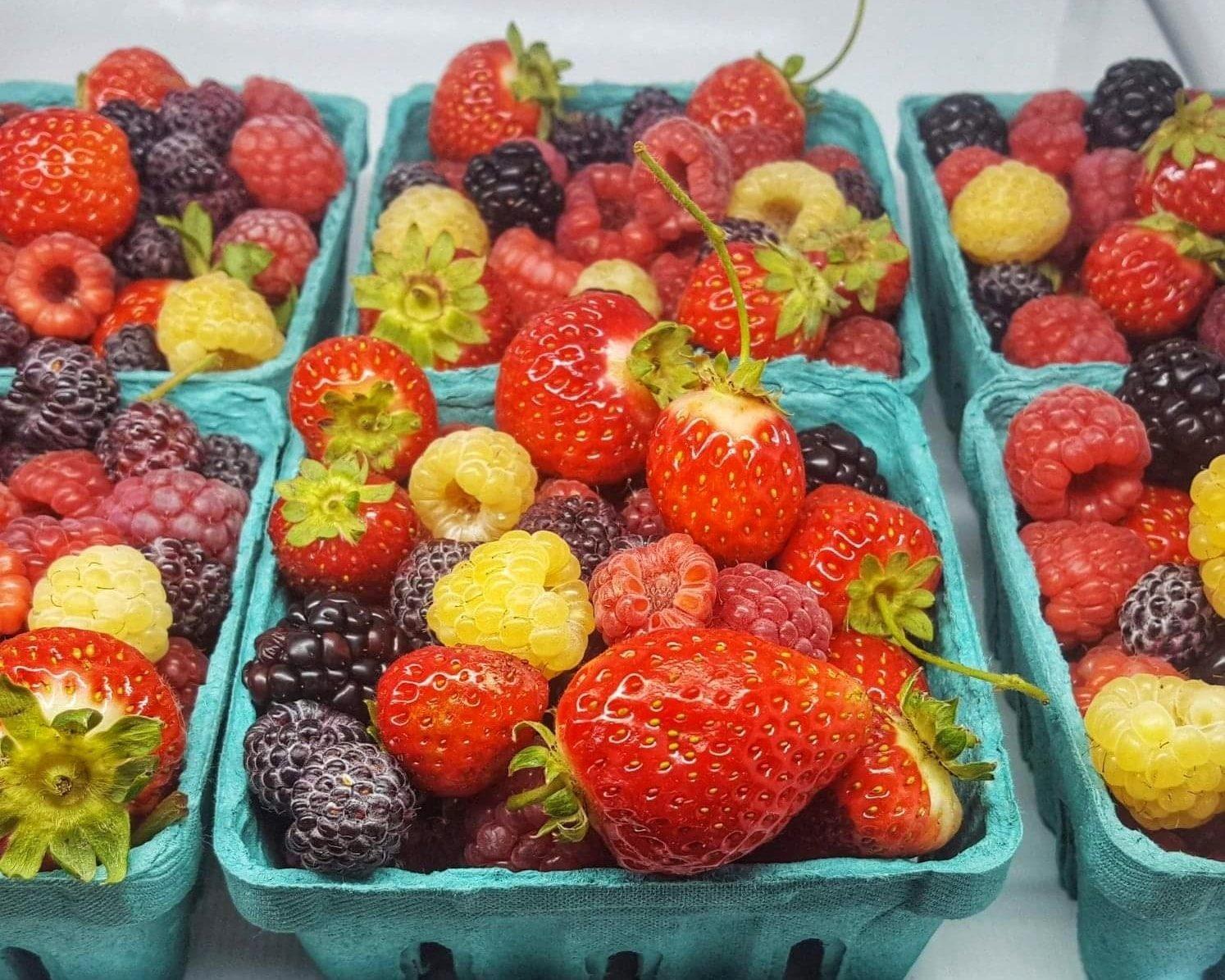 Grow OV Fruit